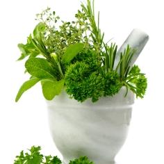 ziola2 - zdrowe jedzenie